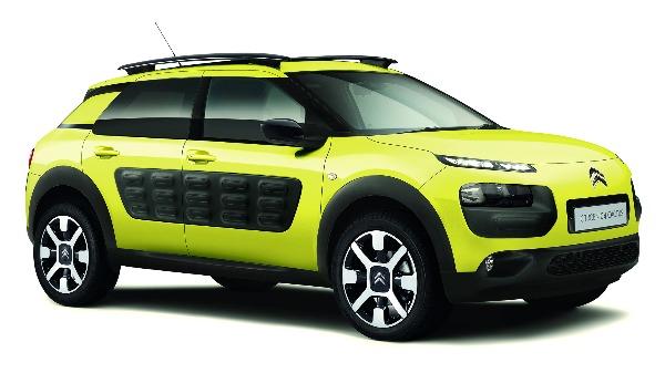 C4 Cactus yellow RHS
