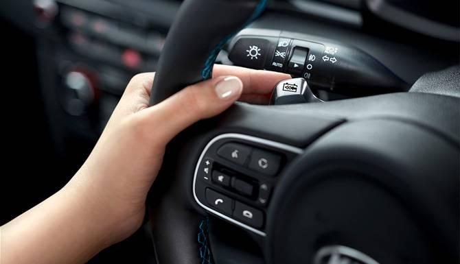 Kia e-niro wheel hand controls